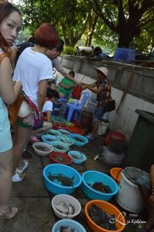 Sjømat utsalg i Gulangyu