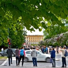Karl Johans gata mot Det Kongelig Slottet