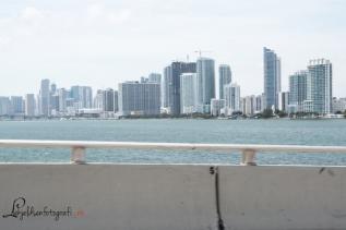 Miami 800-3717