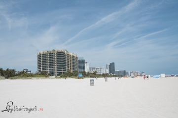 Miami 800-3725