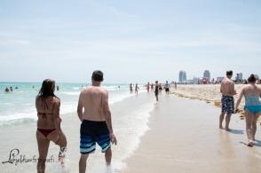 Miami 800-3781