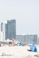 Miami 800-3785