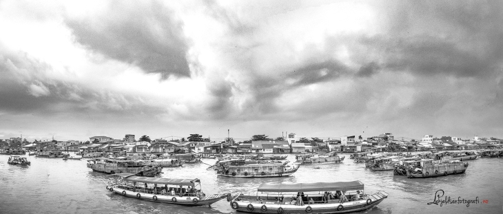 Panorama Can Tho.jpg